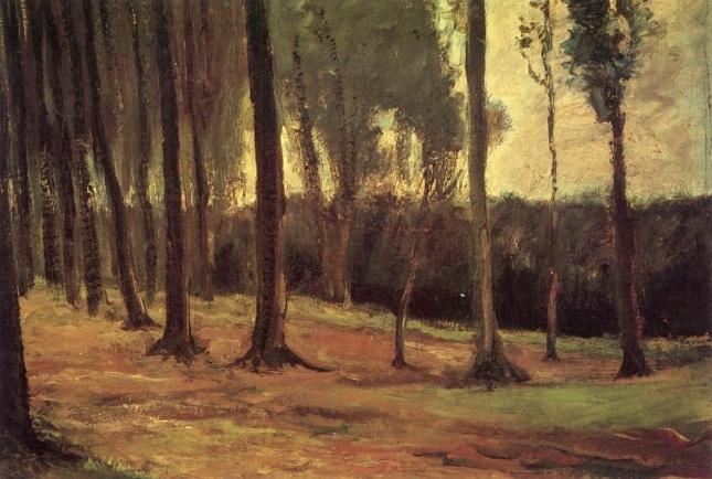Afueras del bosque
