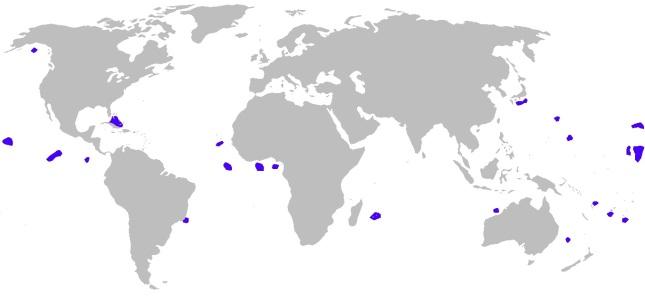 Distribución Tiburón cigarro