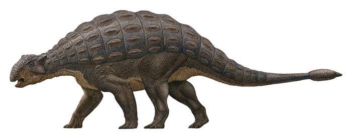 Grandes Dinosaurios Herbívoros II (6/6)
