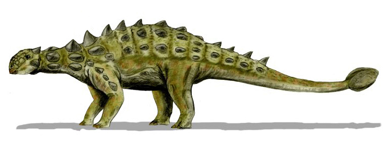 Grandes Dinosaurios Herbívoros II (2/6)