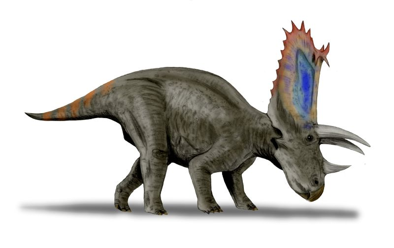 Grandes Dinosaurios Herbívoros II (5/6)