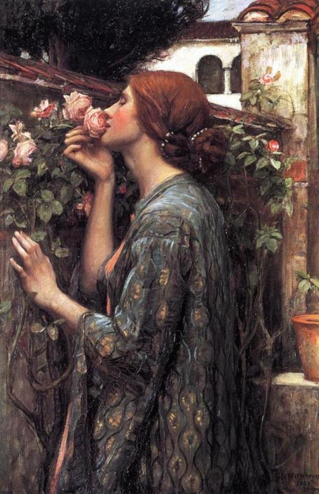 El alma de la rosa