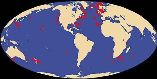 Distribución Calamar gigante