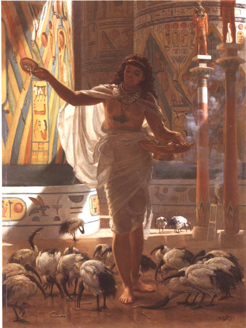 Alimentando a los ibis en los sagrados pasillos de Karnak