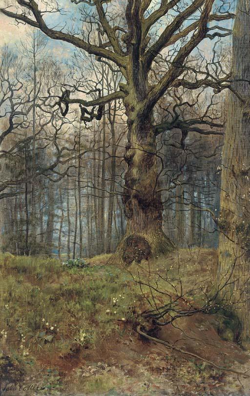El bosque en primavera