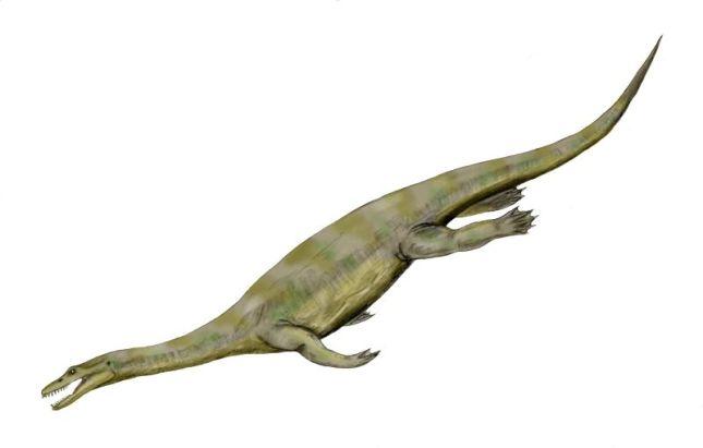 Nothosaurus