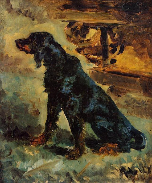 Dun, Setter Escocés perteneciente al Conde Alphonse de Touluse-Lautrec