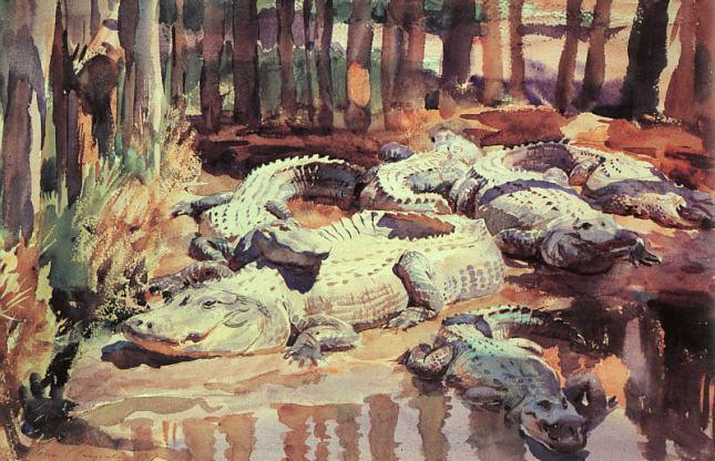 Aligátores en el fango