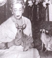 Margarita Ruiz de Lihory Mascotas