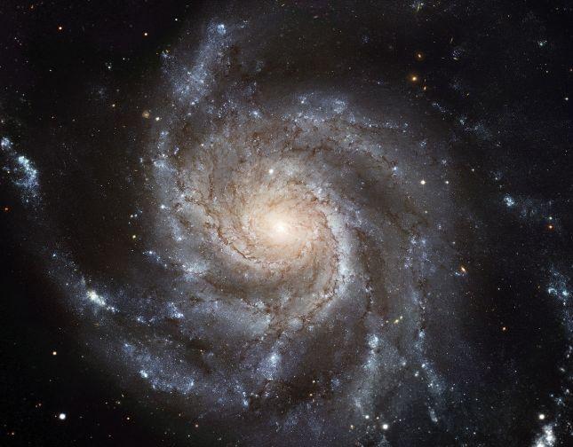 Galaxia del Molinete