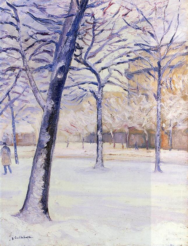 Parque con nieve