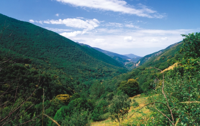 Parque Natural de las Fuentes del Narcea, Degaña e Ibias