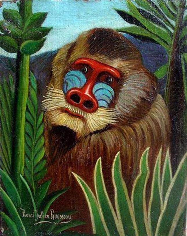 Mandril en la jungla