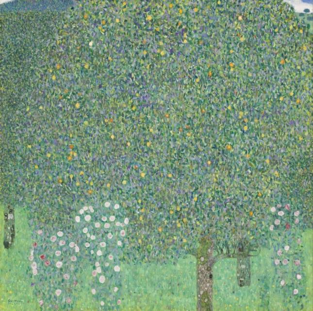 Rosales bajo los árboles