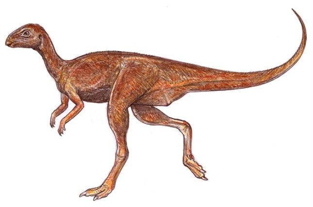 Gasparinisaura