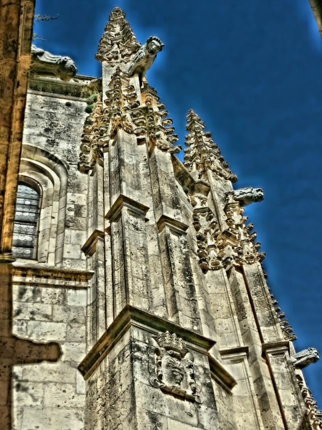 Gárgolas Catedral de Segovia