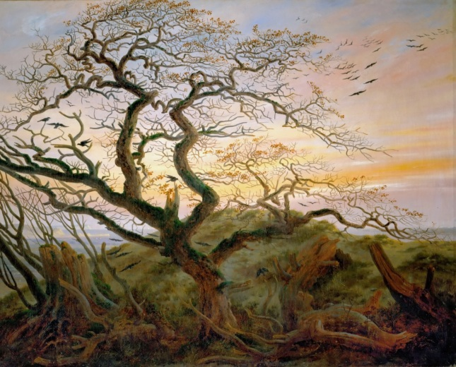 El árbol de los cuervos