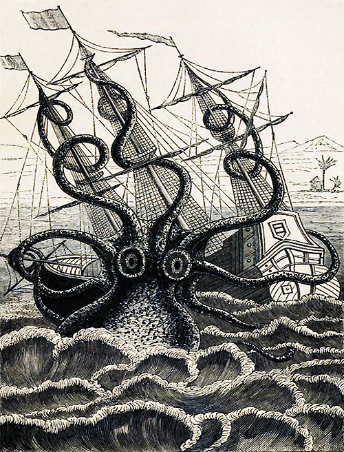 Pierre Dénys de Montfort - Calamar gigante