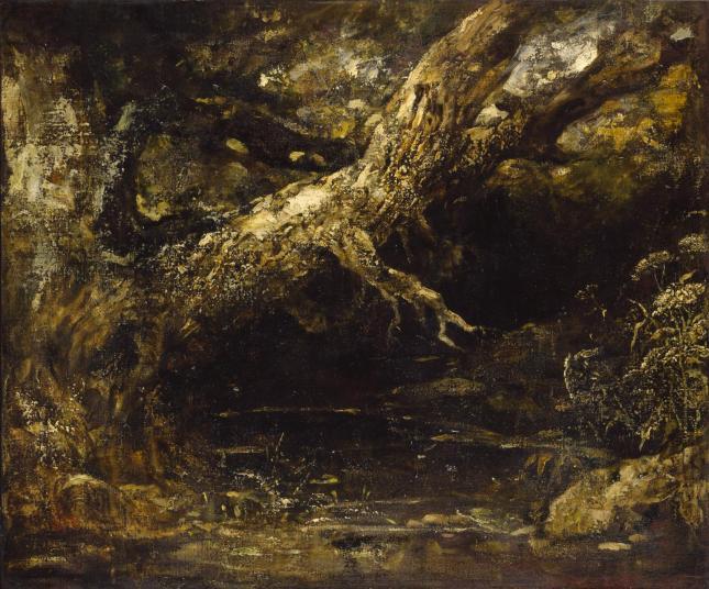 Tronco y ramas bajas de un árbol