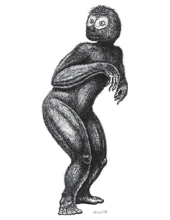 Mono mofeta